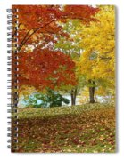 Fall In Kaloya Park 9 Spiral Notebook