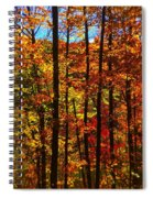Fall In Ontario Canada Spiral Notebook