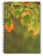 Fall-ing Rain Square Spiral Notebook