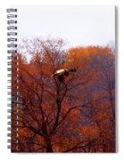 Fall Landing Spiral Notebook
