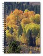 Fall Lands In Western Wyoming Spiral Notebook