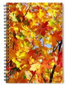 Fall Leaves Background Spiral Notebook