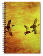 Fall Migration . Northern Shovelers . Texture . 40d5393 Spiral Notebook