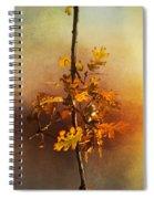 Fall Oak Leaves Spiral Notebook