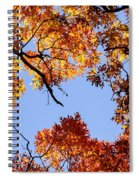 Fall Oak Leaves Up Above Spiral Notebook