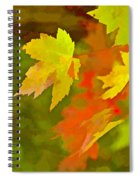 Fall Of Leaf Spiral Notebook