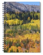 Fall On The Greys River Spiral Notebook