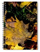 Fall On The Ground Spiral Notebook