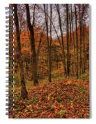 Fall On The Ice Age Trail Spiral Notebook