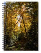 Fall Path In Golden Yellow Spiral Notebook
