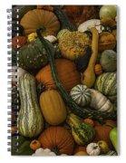 Fall Pile Spiral Notebook
