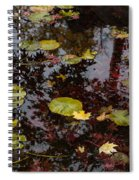 Fall Pond Reflections - A Story Of Waterlilies And Japanese Maple Trees - Take One Spiral Notebook