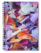 Fall Purples  Spiral Notebook