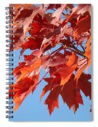 Fall Red Orange Leaves Blue Sky Baslee Troutman Spiral Notebook