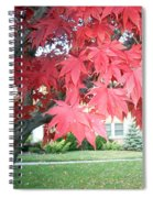 Fall Reds Spiral Notebook