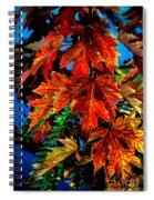 Fall Reds Spiral Notebook