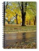 Fall Series 15 Spiral Notebook
