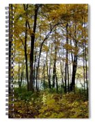 Fall Series 3 Spiral Notebook