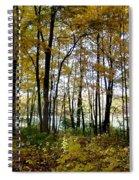 Fall Series 3 Spiral Notebook