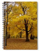 Fall Series 5 Spiral Notebook