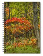 Fall Sumac Trees With Red Leaves In A Michigan Forest During Autumn Spiral Notebook