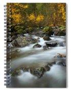Fall Surge Spiral Notebook