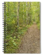 Fall Trail Scene 40 Spiral Notebook