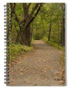 Fall Trail Scene 45 A Spiral Notebook