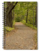 Fall Trail Scene 45 B Spiral Notebook