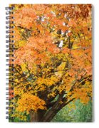 Fall Tree Art Print Autumn Leaves Spiral Notebook