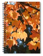 Fall Tree Art Prints Orange Autumn Leaves Baslee Troutman Spiral Notebook