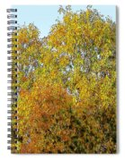 Fall Tree Spiral Notebook