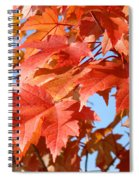 Fall Tree Leaves Art Prints Blue Sky Autumn Baslee Troutman Spiral Notebook