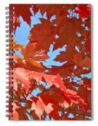 Fall Tree Leaves Red Orange Autumn Leaves Blue Sky Spiral Notebook