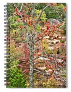Fall Tree With Intense Colors Spiral Notebook