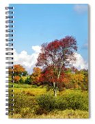 Fall Trees In Country Field Spiral Notebook