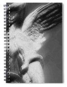 Fallen Angel Spiral Notebook
