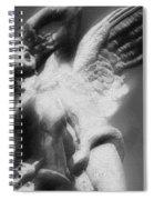 Fallen Angel Vertical Spiral Notebook