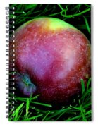 Fallen Apple Spiral Notebook