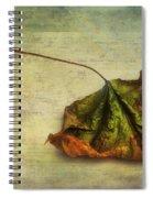 Fallen Down In Summer Spiral Notebook