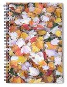 Fallen Fantasy Spiral Notebook