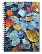 Fallen Leaves Spiral Notebook