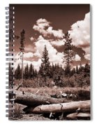 Fallen Trees Spiral Notebook