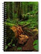 Fallen Trunk Spiral Notebook