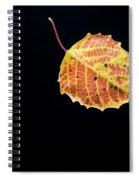 Falling Birch Leaf Spiral Notebook