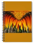 Falling Fire Spiral Notebook
