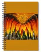 Falling Fire Spiral Notebook