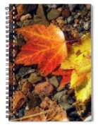 Falling In Threes Spiral Notebook