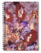 Falling Leave's Spiral Notebook