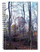 Falling Spiral Notebook